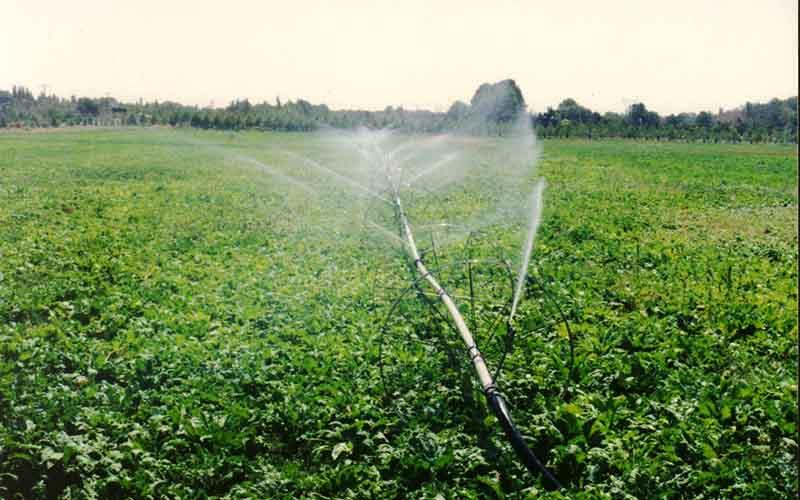 تجهیز 20 درصد زمینهای کشور به سامانه آبیاری نوین