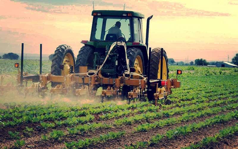 وضعیت قرمز آفات کشاورزی ۲۰ استان در سال گذشته