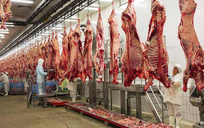 نگران تامین گوشت قرمز شب عید نیستیم