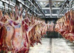 ادامه واردات گوشت منجمد و گرم از آسیای میانه