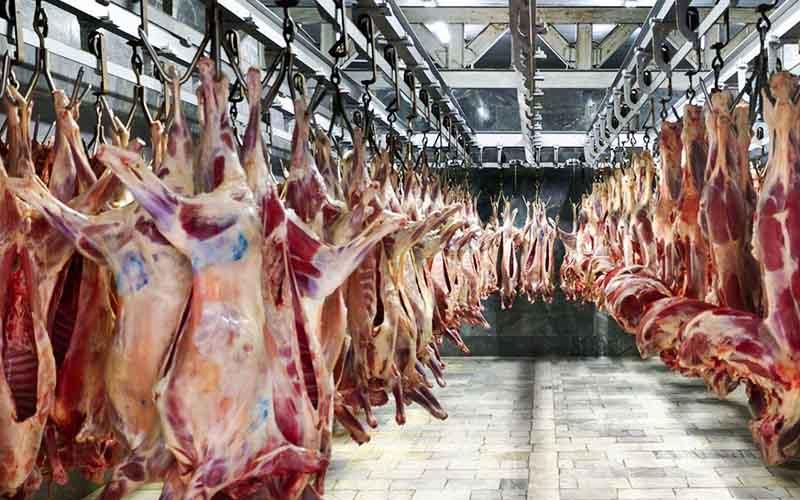 Image result for توزیع گوشت گوسفندی تازه تنظیم بازار