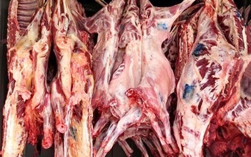 دولت به واردکنندگان گوشت یارانه میدهد