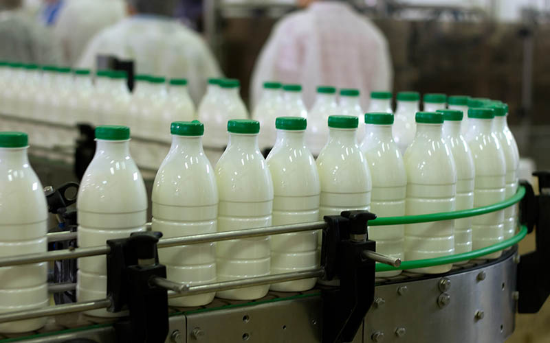 تولید شیر 793 هزار تن افزایش یافت