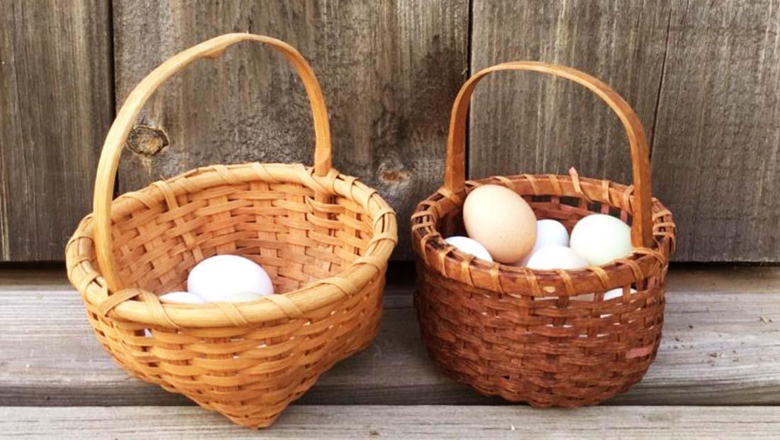 ورود به بورس تخممرغ