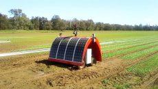 پساکمیابی کشاورزی روبات هوشمند