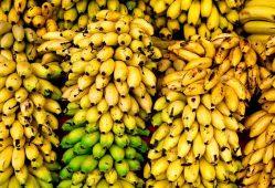 افزایش ۲۱ درصدی واردات موز در ۸ماهه امسال