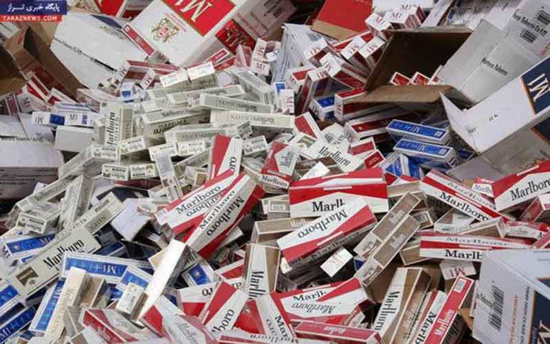 قاچاق سیگار نصف شد