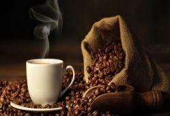 قهوه+تجارت نیوز