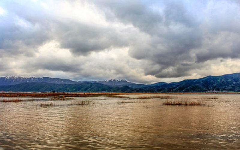 50 هکتار از نیزارهای دریاچه زریبار مریوان در آتش سوخت