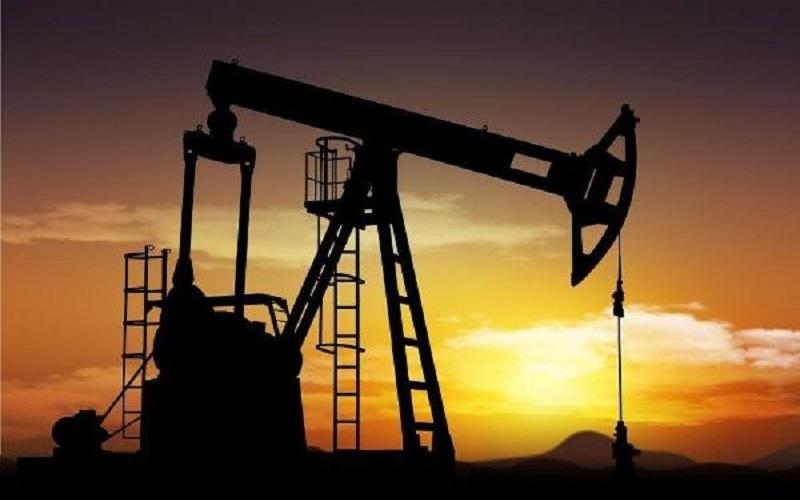 افزایش قیمت طلای سیاه در بازار جهانی