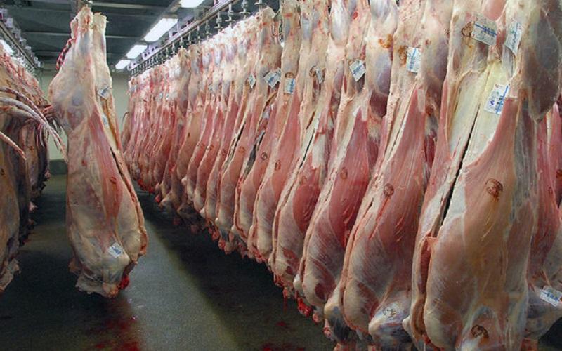 کمبود دام دلیل اصلی گرانی گوشت داخلی