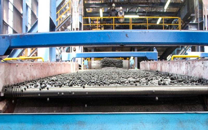 دو واحد گندلهسازی ۵ میلیون تنی در سنگان افتتاح شد