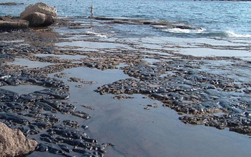 مشارکت دانشگاهها و شرکتهای دانشبنیان در یک طرح زیستمحیطی نفتی