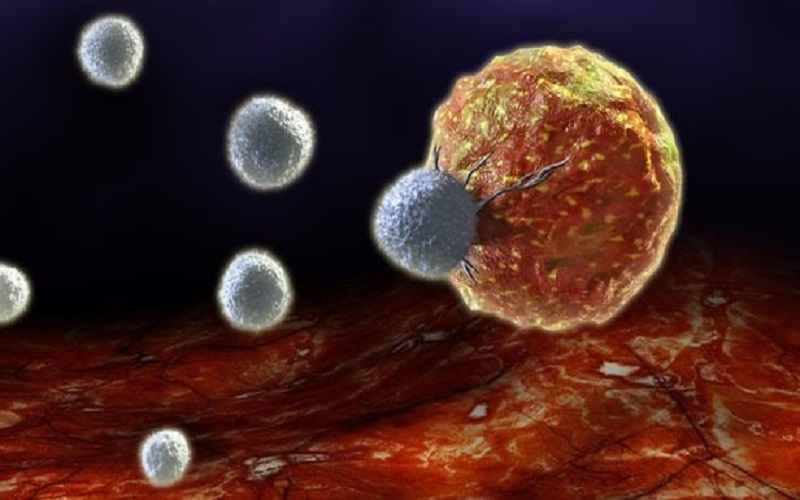 کشف پروتئین کمککننده به مبارزه با سرطان