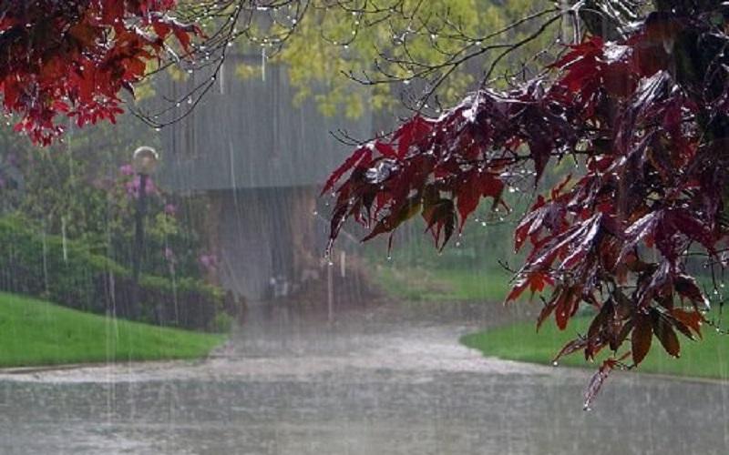 کاهش ۲۰ درصدی بارشها نسبت به سال گذشته