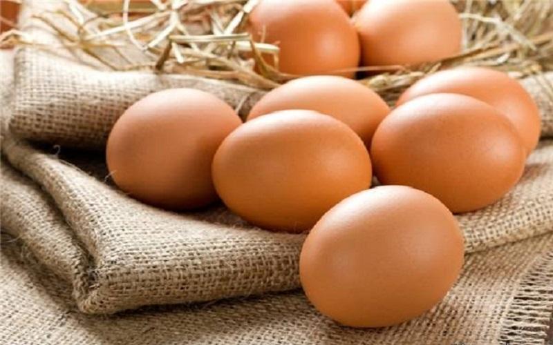 افزایش ۴۰ درصدی قیمت تمامشده تولید تخممرغ