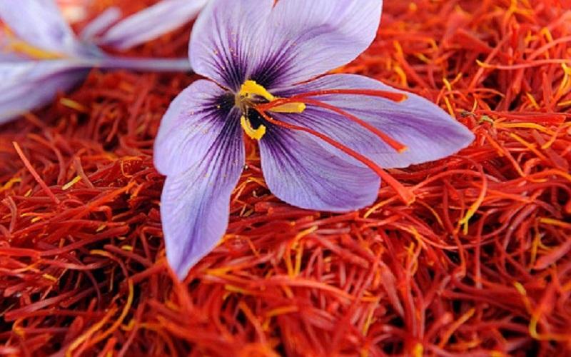 ضعف بستهبندی زعفران در کشور