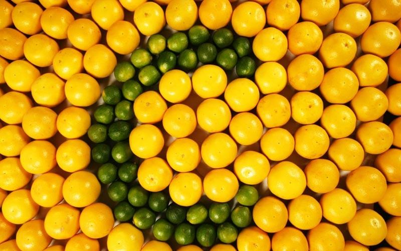 بدن را با این میوهها در برابر آلودگی هوا مقاوم کنید