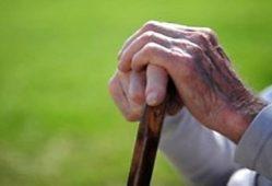 سالمندان+تجارت نیوز