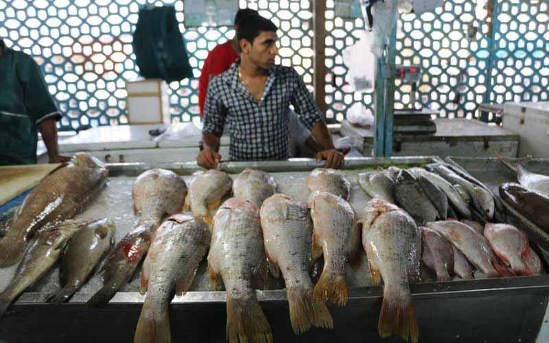 نرخهای جدید گوشت سفید در بازار مصرف