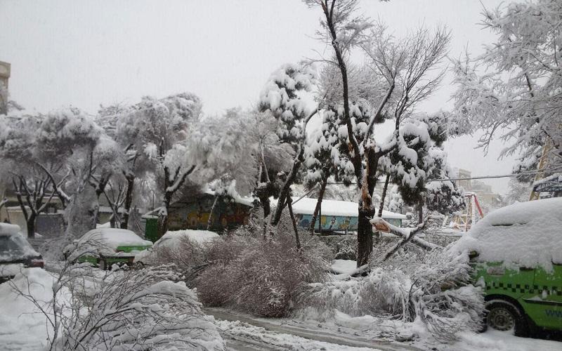 پیشبینی بارش برف در ۵ استان