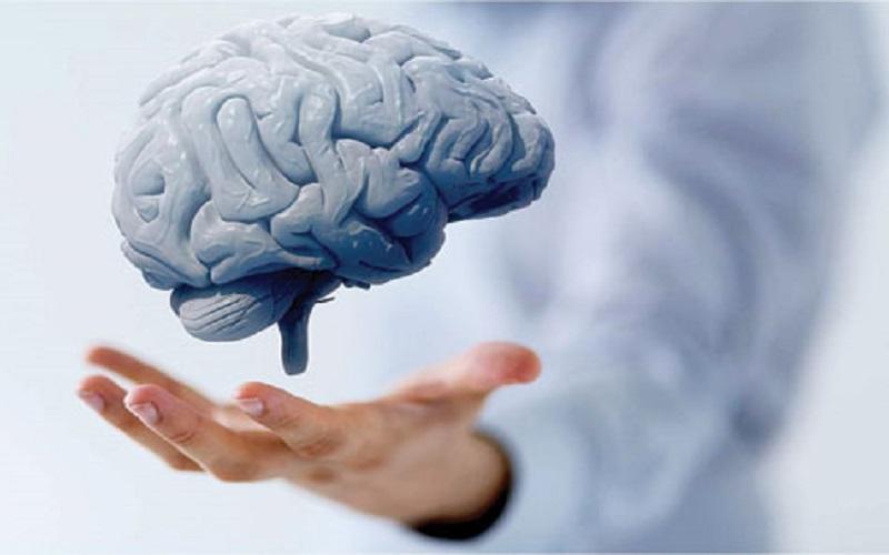 تاثیر تحریک الکتریکی مغز بر فعالیتهای ورزشکاران