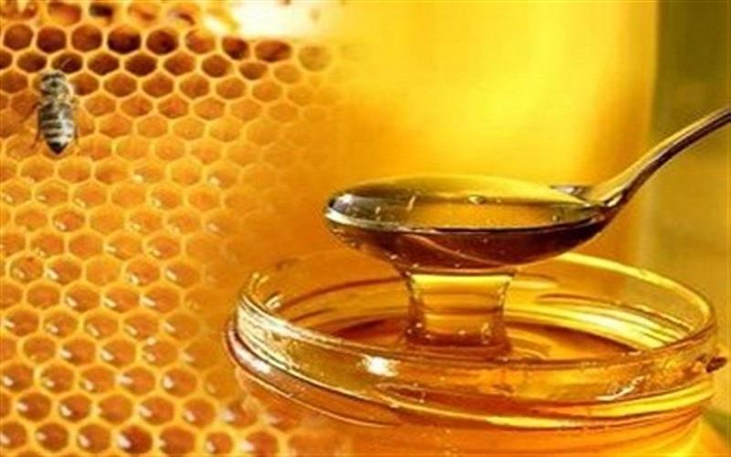 صادرات ۷۶۵ تن عسل طبیعی