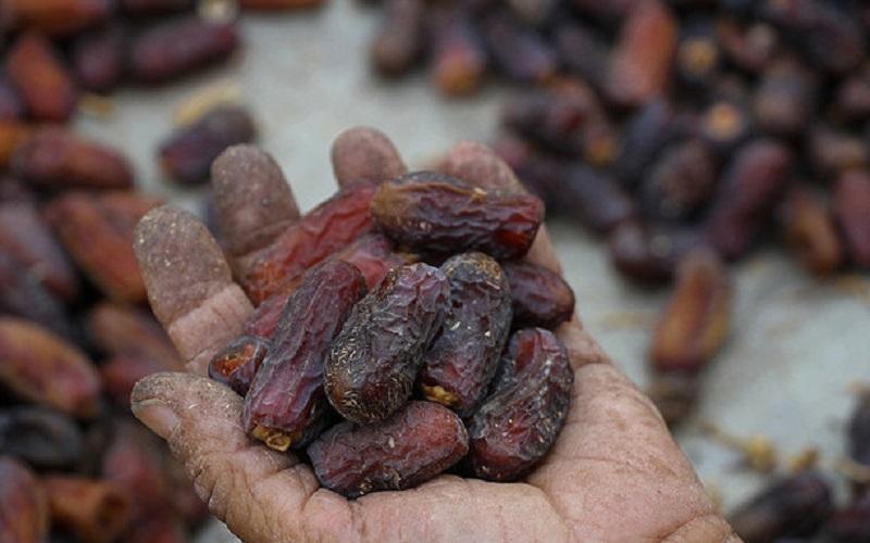 قیمت خرما در ماه رمضان متعادل است
