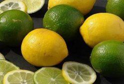 لیمو+تجارت نیوز