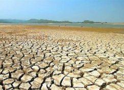 خشکسالی+تجارت نیوز