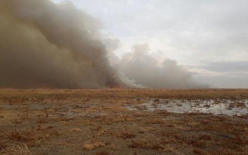 آتشسوزی دوباره تالاب گندمان مهار شد