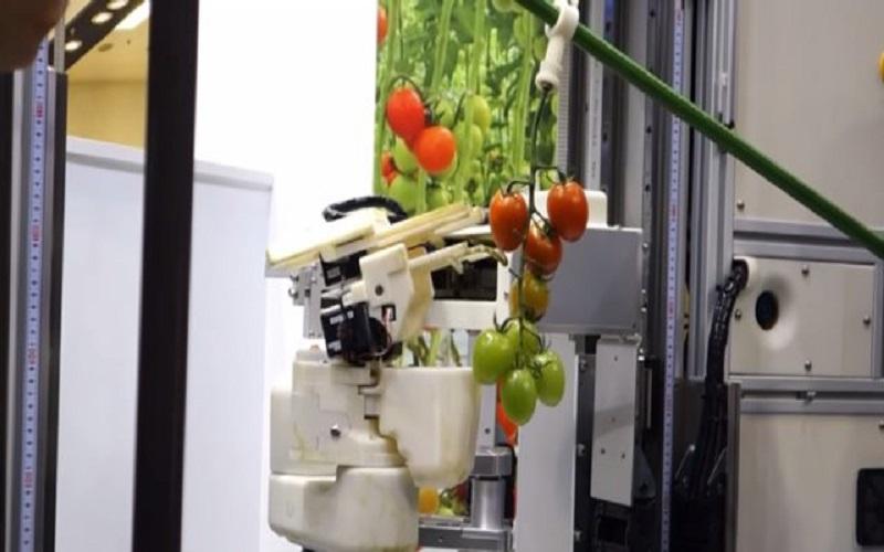 طراحی یک ربات برای برداشت محصولات کشاورزی