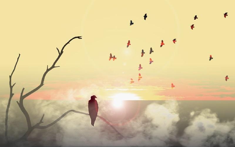 در ستایش تنهایی! اگر نتوانیم تنها شویم تنهاتر میشویم