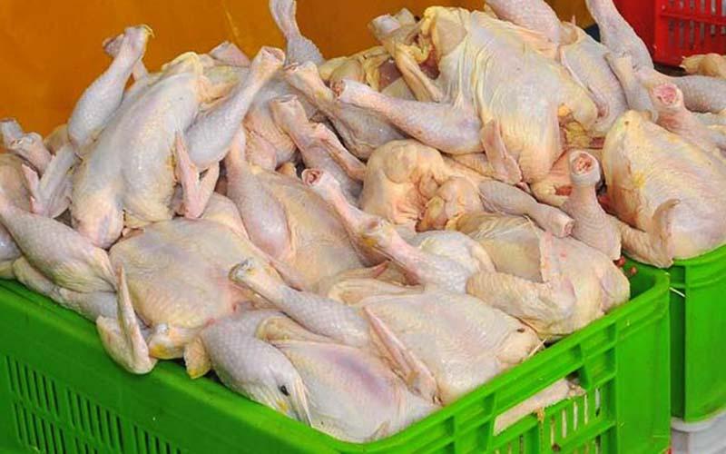 قیمت مرغ به ۸۳۰۰ تومان رسید