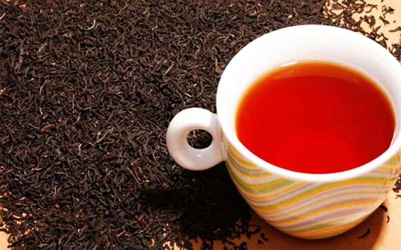 سهم ۱۰ درصدی مازندران از تولید چای خشک در کشور