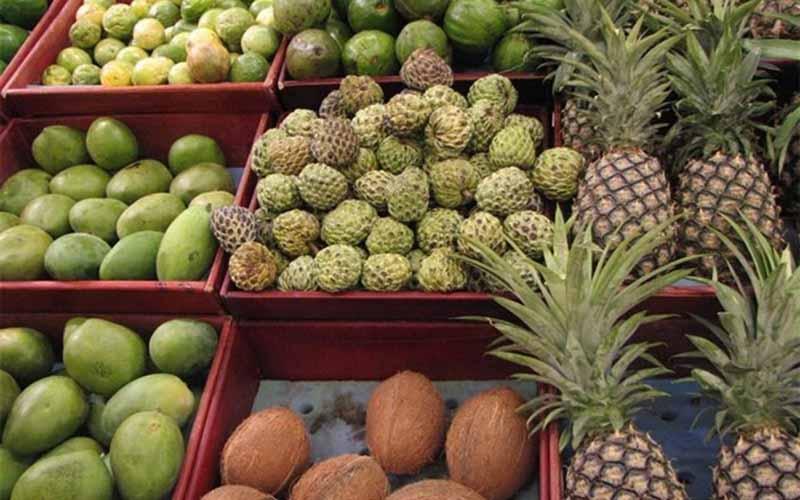 کشف میوههای قاچاق در میدان ترهبار تهران