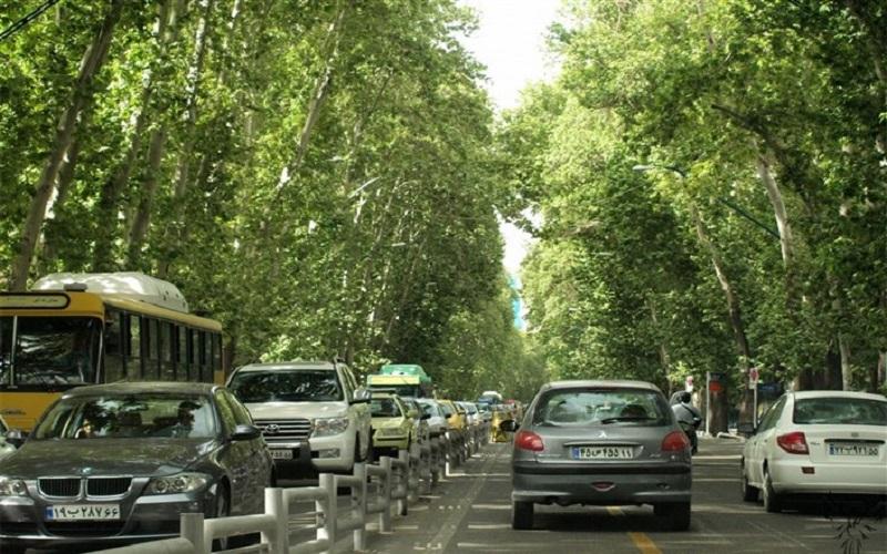 درختان خیابان ولیعصر به قارچ سرطان رنگی مبتلا شدهاند