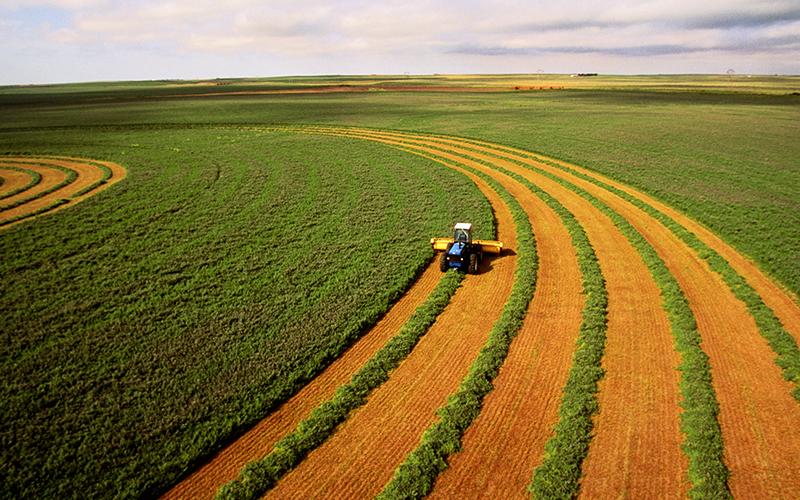 نابودی کشاورزان با کشت فراسرزمینی