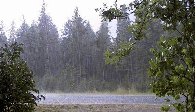 آخرین آمار وضعیت بارندگی کشور