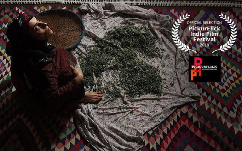 حضور «فروزان» از ایران در یک جشنواره هندی