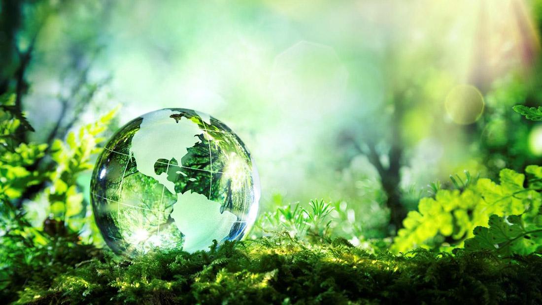 محیطزیست توسعه پایدار سود