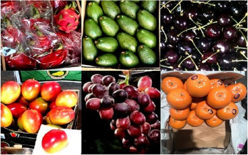 ثبات نسبی قیمت میوه در میدان مرکزی میوه و ترهبار