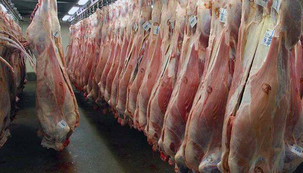 ثبات نرخ گوشت گوسفندی در بازار
