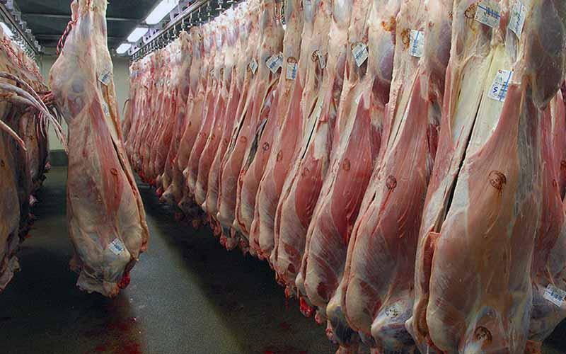 توزیع روزانه ۱۵۰ تن گوشت قرمز وارداتی در بازار