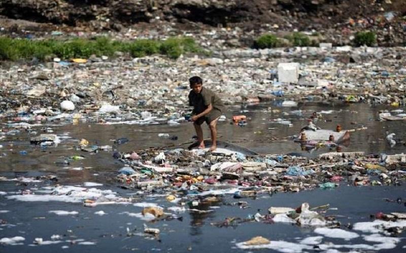 سازمان ملل نسبت به کاهش تنوع زیستی در جهان هشدار داد