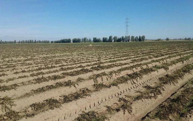 رصد خشکسالی در کشور با ماهواره