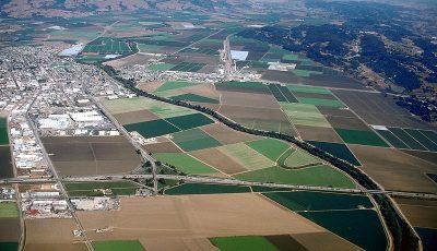 توسعه کشت دیم راهکار کشاورزان کالیفرنیا برای تولید محصولات