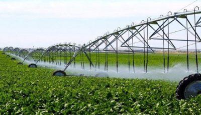 آب مهمترین چالش کشاورزی در ایران است