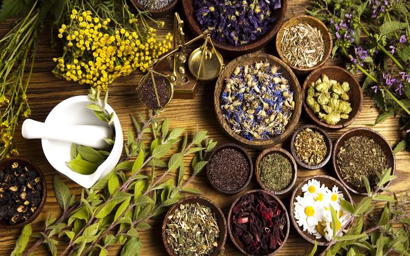 ۱۱ مُسکن گیاهی و طبیعی قوی در طب سنتی