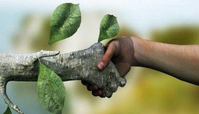 راه را برای حامیان محیط زیست باز کنیم